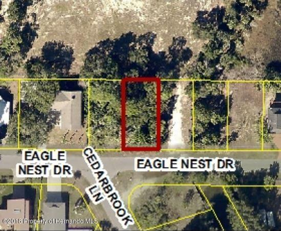 0 Eagle Nest Drive, Hernando Beach, FL 34607 (MLS #2195975) :: The Hardy Team - RE/MAX Marketing Specialists