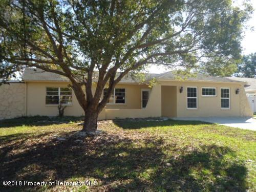 9123 Horizon Drive, Spring Hill, FL 34608 (MLS #2196142) :: The Hardy Team - RE/MAX Marketing Specialists