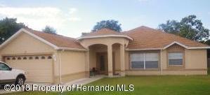11103 Tilburg Street, Spring Hill, FL 34608 (MLS #2196257) :: The Hardy Team - RE/MAX Marketing Specialists