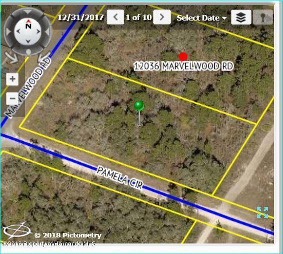 12026 Marvelwood Road, Brooksville, FL 34614 (MLS #2196443) :: The Hardy Team - RE/MAX Marketing Specialists