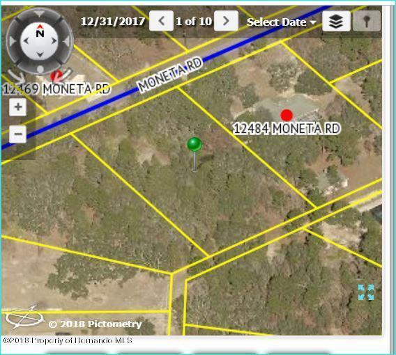 12472 Moneta Road, Brooksville, FL 34614 (MLS #2196494) :: The Hardy Team - RE/MAX Marketing Specialists