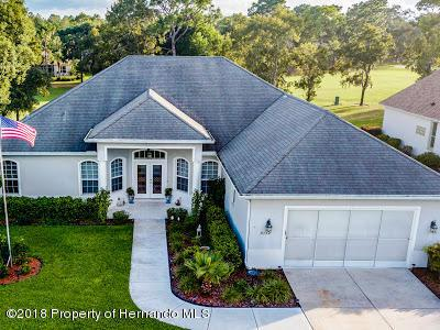 9132 Tarleton Circle, Weeki Wachee, FL 34613 (MLS #2196540) :: The Hardy Team - RE/MAX Marketing Specialists
