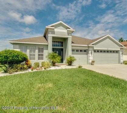4427 Crosswhite Court, Spring Hill, FL 34609 (MLS #2196547) :: The Hardy Team - RE/MAX Marketing Specialists
