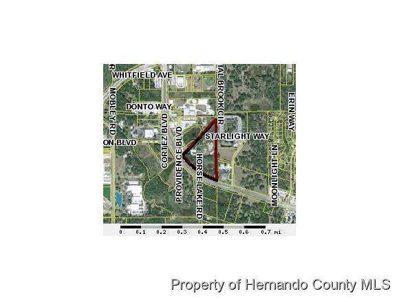18985 Cortez Boulevard, Brooksville, FL 34601 (MLS #2196635) :: The Hardy Team - RE/MAX Marketing Specialists
