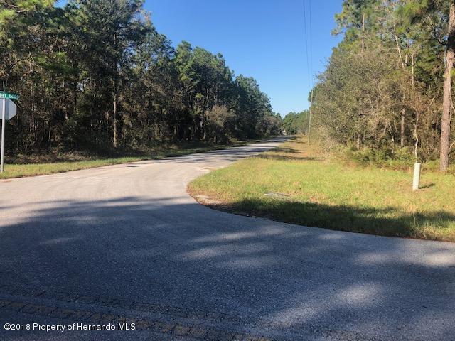 0 Jumper Loop (Divine Lot 20), Brooksville, FL 34609 (MLS #2196678) :: The Hardy Team - RE/MAX Marketing Specialists