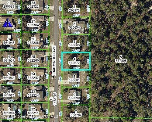0 Charmwood Avenue, Spring Hill, FL 34609 (MLS #2196707) :: The Hardy Team - RE/MAX Marketing Specialists