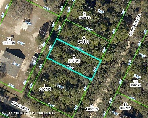 Lot 3 Garfield Avenue, Masaryktown, FL 34604 (MLS #2196804) :: The Hardy Team - RE/MAX Marketing Specialists