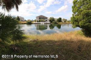 LOT 34 Gardenia Drive, Hernando Beach, FL 34607 (MLS #2196911) :: The Hardy Team - RE/MAX Marketing Specialists