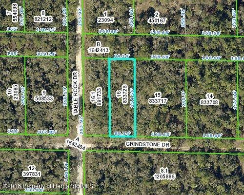 0 Grindstone, Webster, FL 33597 (MLS #2197172) :: The Hardy Team - RE/MAX Marketing Specialists