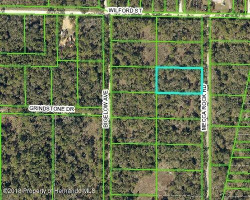 00 Mecca Rock Road, Webster, FL 33597 (MLS #2197512) :: The Hardy Team - RE/MAX Marketing Specialists