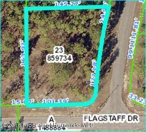 13291 Flagstaff Drive, Brooksville, FL 34614 (MLS #2197611) :: The Hardy Team - RE/MAX Marketing Specialists