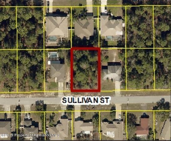 0 Sullivan Street, Spring Hill, FL 34609 (MLS #2197807) :: The Hardy Team - RE/MAX Marketing Specialists