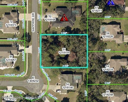12074 Sapphire Drive, Spring Hill, FL 34609 (MLS #2198033) :: The Hardy Team - RE/MAX Marketing Specialists