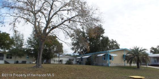 15676 Brookridge Boulevard, Brooksville, FL 34613 (MLS #2198156) :: The Hardy Team - RE/MAX Marketing Specialists