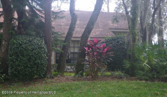 6410 Nature Preserve Lane, Spring Hill, FL 34606 (MLS #2198423) :: The Hardy Team - RE/MAX Marketing Specialists