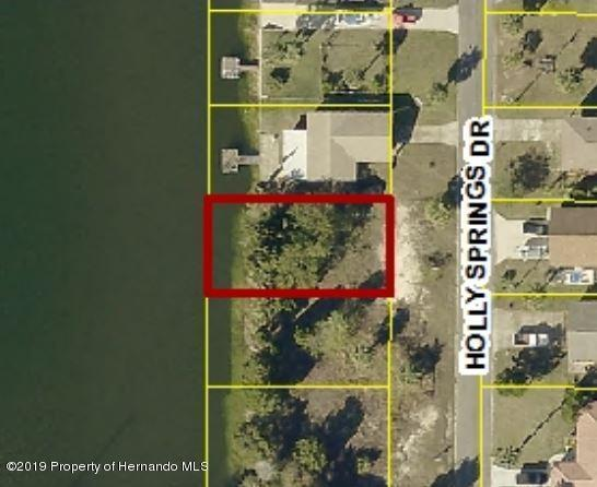 0 Holly Springs Drive, Hernando Beach, FL 34607 (MLS #2198471) :: The Hardy Team - RE/MAX Marketing Specialists