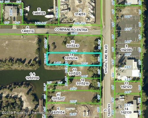 4073 Shoal Line Boulevard, Hernando Beach, FL 34607 (MLS #2198484) :: The Hardy Team - RE/MAX Marketing Specialists