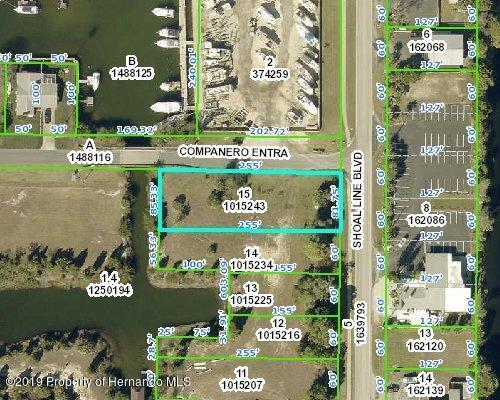 4079 Shoal Line Boulevard, Hernando Beach, FL 34607 (MLS #2198485) :: The Hardy Team - RE/MAX Marketing Specialists