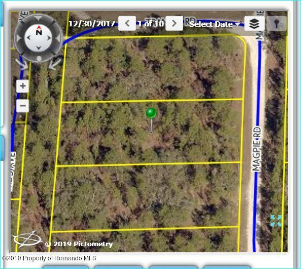 16396 Magpie Avenue, Brooksville, FL 34614 (MLS #2198531) :: The Hardy Team - RE/MAX Marketing Specialists