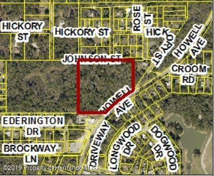 0 Howell Avenue, Brooksville, FL 34601 (MLS #2198683) :: The Hardy Team - RE/MAX Marketing Specialists