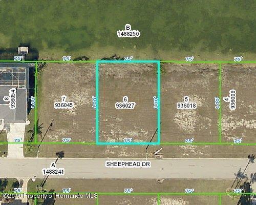 4025 Sheephead Drive, Hernando Beach, FL 34607 (MLS #2198708) :: The Hardy Team - RE/MAX Marketing Specialists