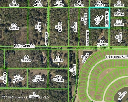 0 Pine Cabin Road, Brooksville, FL 34601 (MLS #2198735) :: The Hardy Team - RE/MAX Marketing Specialists