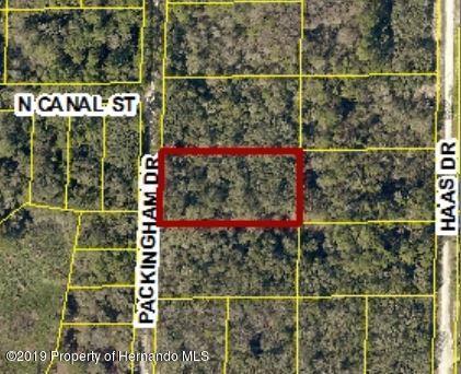 0 Packingham Drive Lot 11, Ridge Manor, FL 33523 (MLS #2198781) :: The Hardy Team - RE/MAX Marketing Specialists
