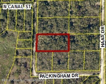0 Packingham Drive Lot 10, Ridge Manor, FL 33523 (MLS #2198782) :: The Hardy Team - RE/MAX Marketing Specialists