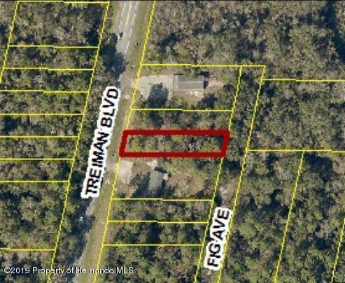 0 Fig Avenue Lot C61, Ridge Manor, FL 33597 (MLS #2198812) :: The Hardy Team - RE/MAX Marketing Specialists
