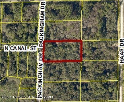 0 Packingham Drive Lots 12&13, Ridge Manor, FL 33523 (MLS #2198816) :: The Hardy Team - RE/MAX Marketing Specialists