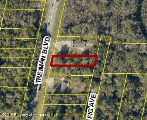 0 Fig Avenue Lot C62, Ridge Manor, FL 33597 (MLS #2198818) :: The Hardy Team - RE/MAX Marketing Specialists