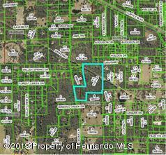 00 Cedar Lane, Brooksville, FL 34601 (MLS #2198895) :: The Hardy Team - RE/MAX Marketing Specialists