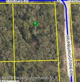 Lot 4 Crumbling Stone Drive, Webster, FL 33597 (MLS #2198994) :: Premier Home Experts