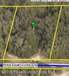 Lot 9 Mineral Stone Drive, Webster, FL 33597 (MLS #2198996) :: The Hardy Team - RE/MAX Marketing Specialists