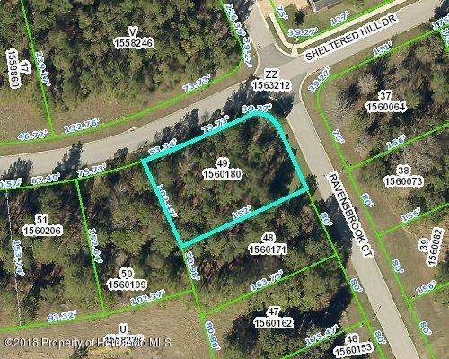 0 Ravensbrook Court, Brooksville, FL 34601 (MLS #2199006) :: The Hardy Team - RE/MAX Marketing Specialists