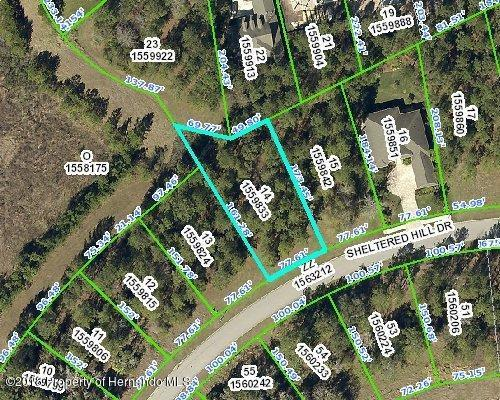 0 Sheltered Hill Drive, Brooksville, FL 34601 (MLS #2199063) :: The Hardy Team - RE/MAX Marketing Specialists