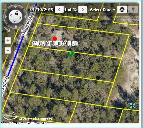 11000 Millerdale Road, Brooksville, FL 34614 (MLS #2199188) :: The Hardy Team - RE/MAX Marketing Specialists