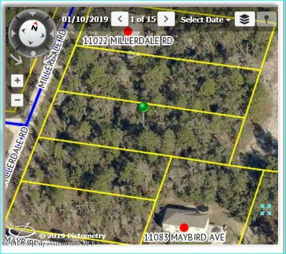 10480 Millerdale Road, Brooksville, FL 34614 (MLS #2199216) :: The Hardy Team - RE/MAX Marketing Specialists