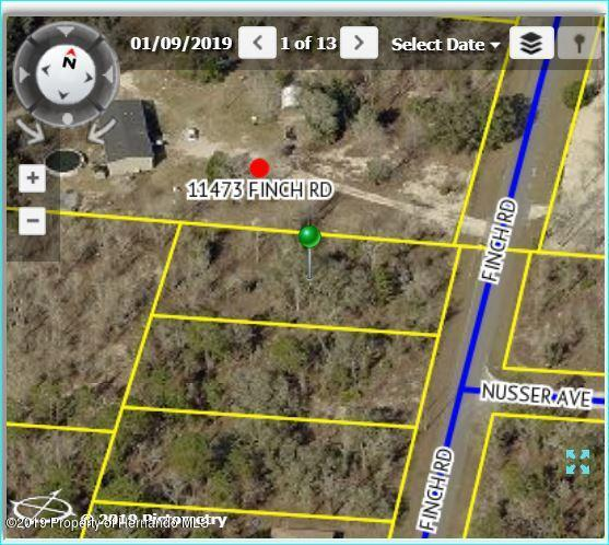 11467 Finch Road, Brooksville, FL 34614 (MLS #2199218) :: The Hardy Team - RE/MAX Marketing Specialists