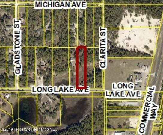 0 Long Lake Avenue Lots 118 & 119, Weeki Wachee, FL 34613 (MLS #2199533) :: The Hardy Team - RE/MAX Marketing Specialists