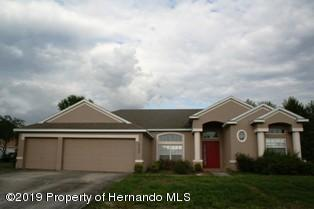 6340 Seahorse Avenue, Spring Hill, FL 34608 (MLS #2199626) :: The Hardy Team - RE/MAX Marketing Specialists
