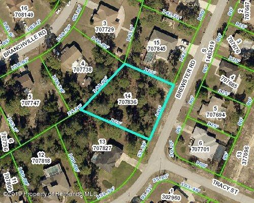 0 Brewster Road, Spring Hill, FL 34609 (MLS #2199730) :: The Hardy Team - RE/MAX Marketing Specialists