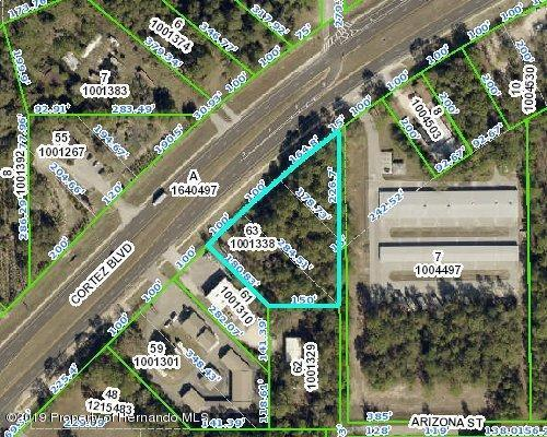 Address Not Published, Brooksville, FL 34613 (MLS #2199900) :: The Hardy Team - RE/MAX Marketing Specialists