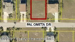 0 Palometa Drive, Hernando Beach, FL 34607 (MLS #2200031) :: The Hardy Team - RE/MAX Marketing Specialists
