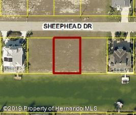 0 Sheephead Drive, Hernando Beach, FL 34607 (MLS #2200033) :: The Hardy Team - RE/MAX Marketing Specialists