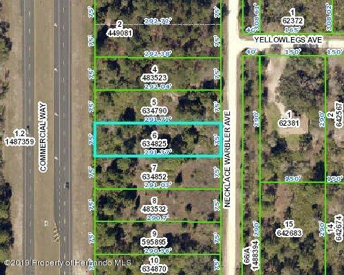 Lot 6 Commercial, Weeki Wachee, FL 34614 (MLS #2200229) :: The Hardy Team - RE/MAX Marketing Specialists