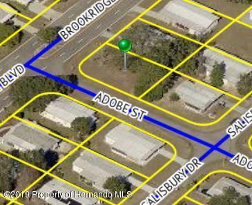 16167 Brookridge Boulevard, Brooksville, FL 34613 (MLS #2200310) :: The Hardy Team - RE/MAX Marketing Specialists