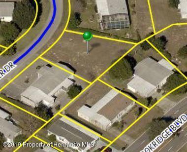 8260 Fortune Hunter Drive, Brooksville, FL 34613 (MLS #2200356) :: The Hardy Team - RE/MAX Marketing Specialists