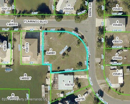 0 Flamingo Boulevard, Hernando Beach, FL 34607 (MLS #2200455) :: The Hardy Team - RE/MAX Marketing Specialists