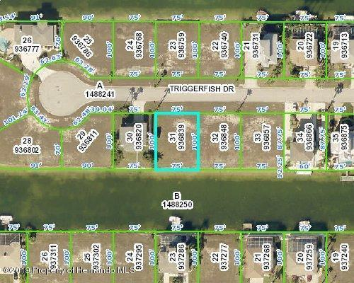 Lot 31 Triggerfish Drive, Hernando Beach, FL 34607 (MLS #2200519) :: The Hardy Team - RE/MAX Marketing Specialists